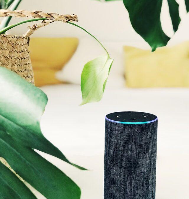 Alexa smart speaker with plant